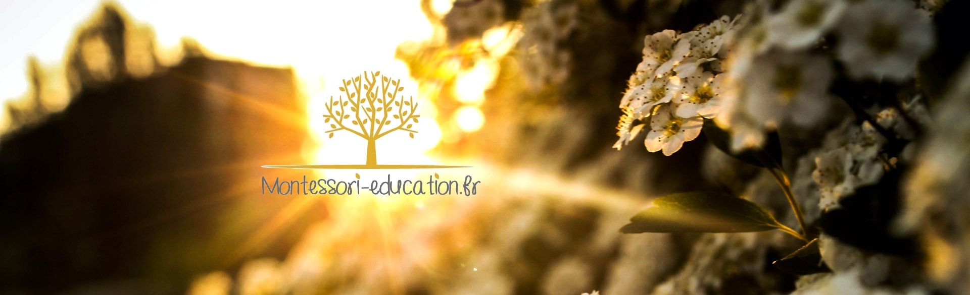 montessori-education