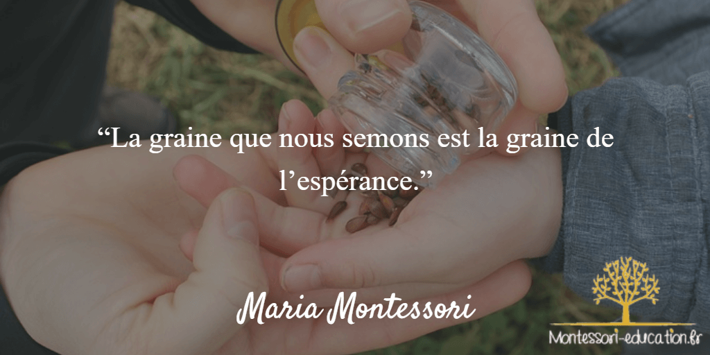 Citation-17-maria-montessori