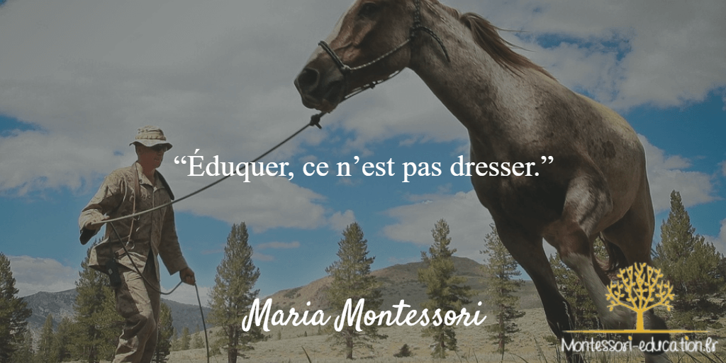 Citation-4-maria-montessori