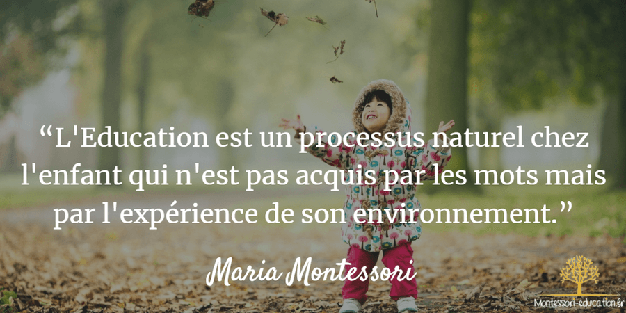 20 Citations De Maria Montessori Montessori Education